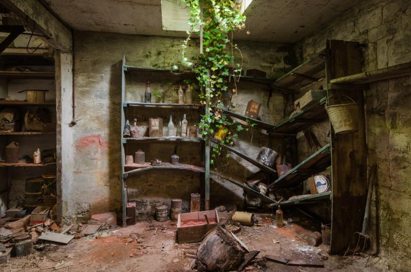 Wanneer de natuur verlaten plekken overneemt